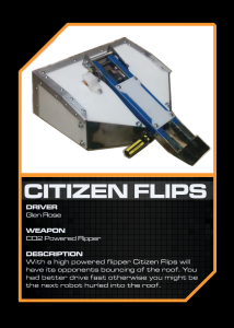 Citizen Flips